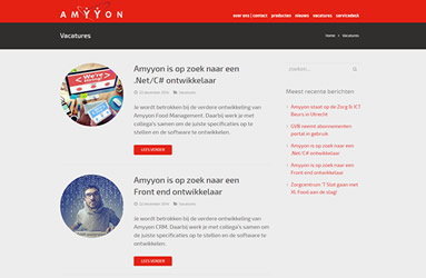 Amyyon software